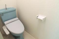 toiletDSCN6700